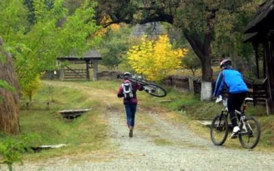 orientare bicicleta